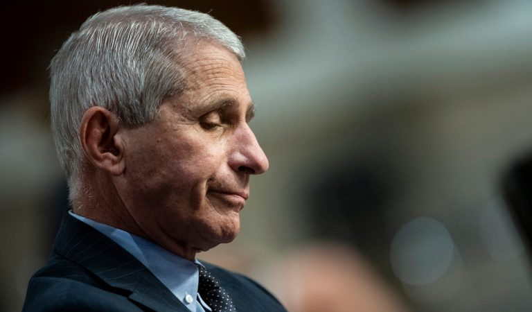 Is Furious Dr Fauci doubling down on Controversial Claim?